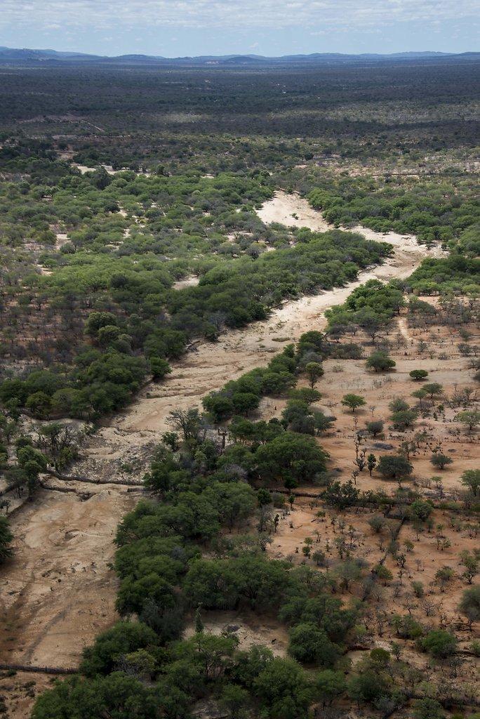 Leito seco do Rio Brígida, PE.